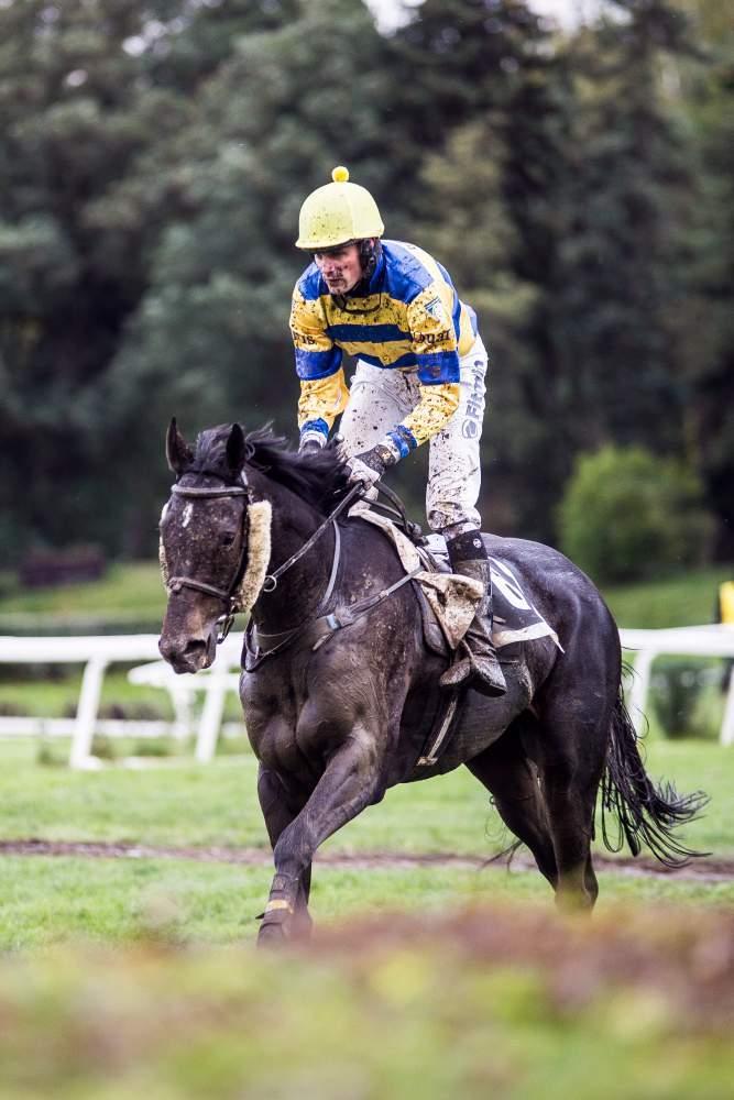 Jeden ze zadržených koní pomalu cválá k cíli, svou trofej dnes nevyhraje, foto: Kristýna Čermáková