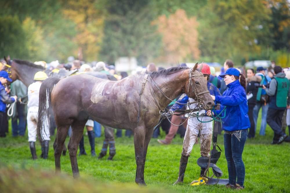 Z koní po dostihu stoupala pára a odkapávalo bláto, foto: Kristýna Čermáková