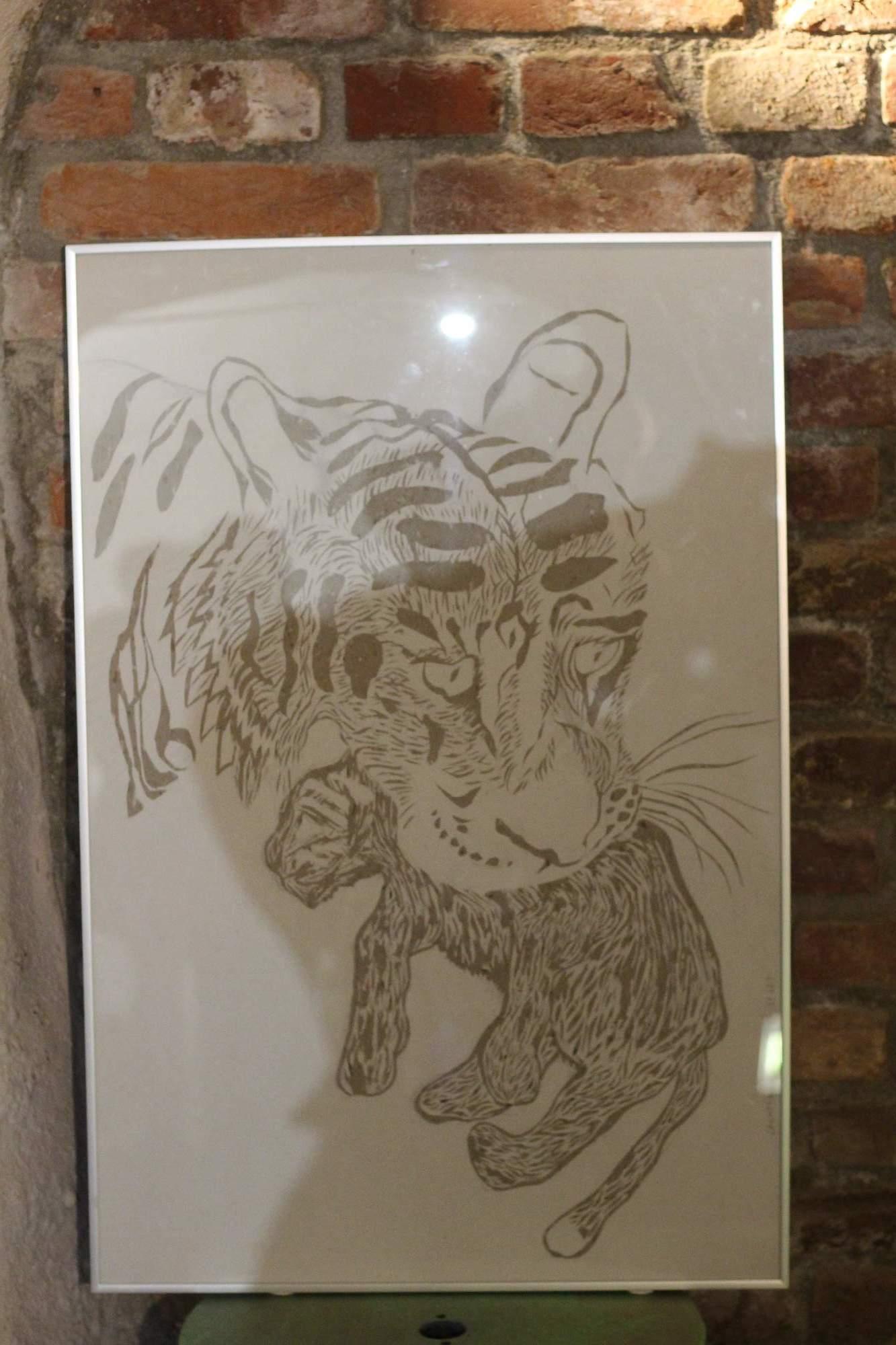 Tygr nesoucí své mládě. Foto: Tomáš Siřinek