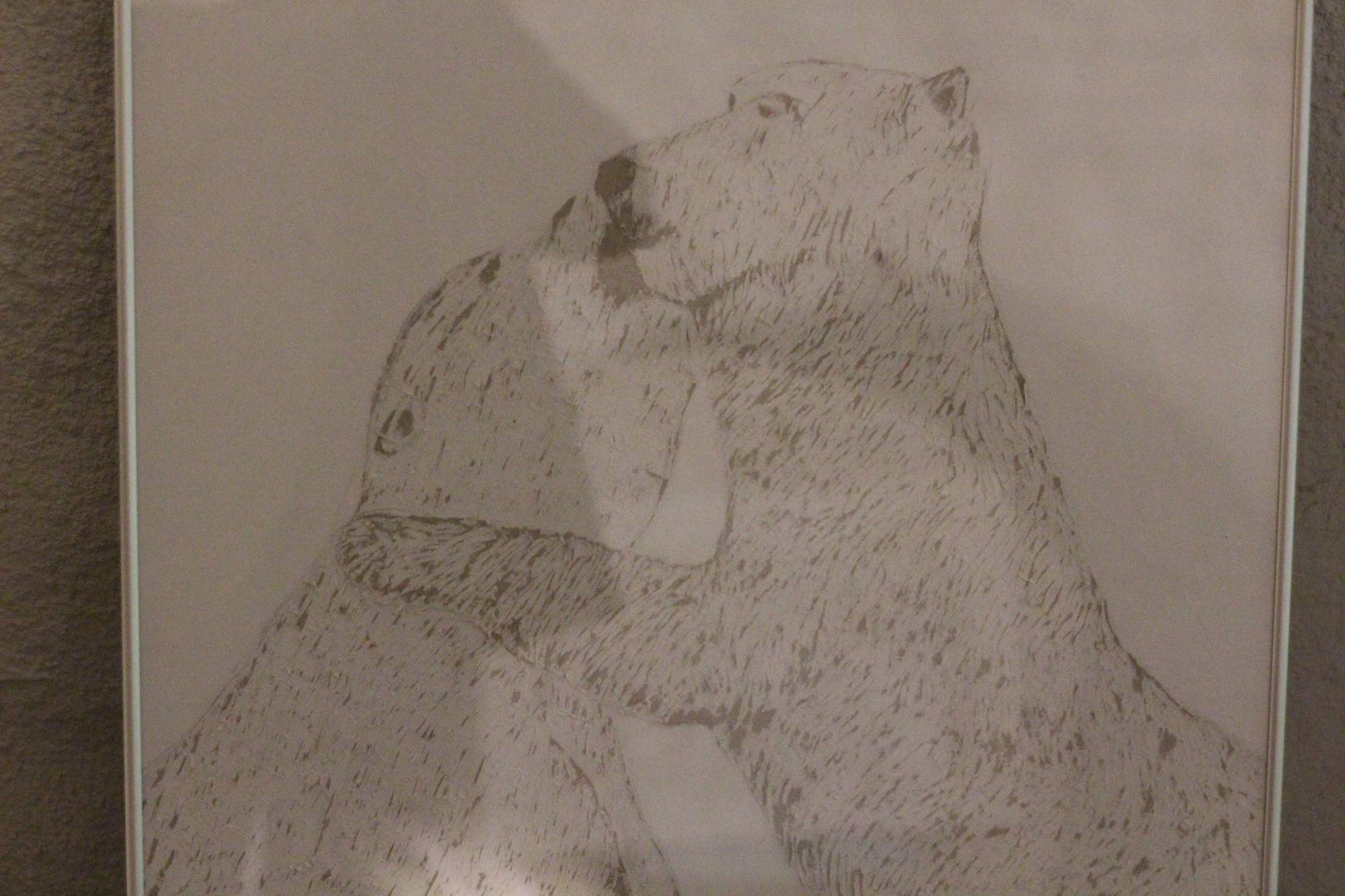 Zápasící medvědi. Foto: Tomáš Siřinek