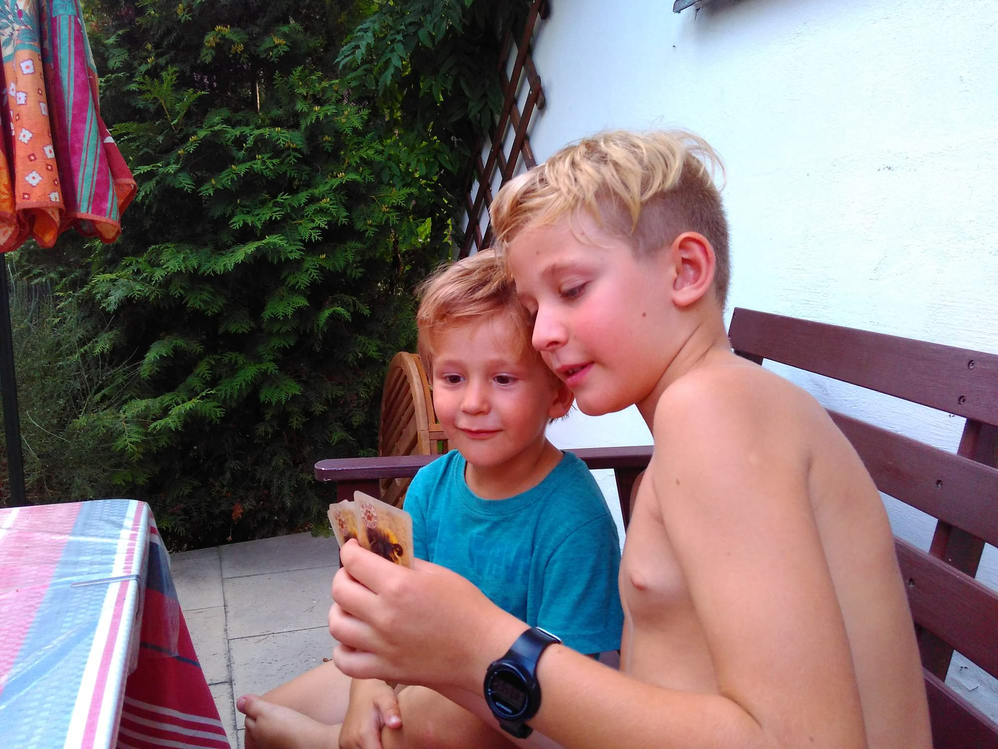 rajce.idnes.cs.net boy sharkas - iDNES.cz