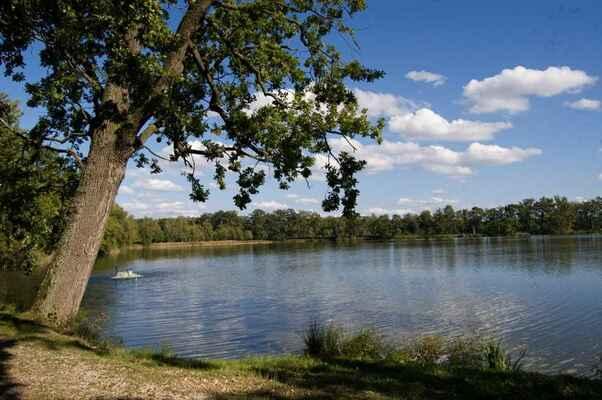Někde na hrázích mezi rybníky Láska, Víra a Naděje.