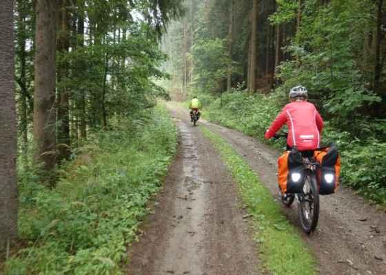 Z Chřenovic je červená značka dobrá tak akorát pro pěší a cyklo 19 vede poměrně velkým obloukem do Vlastějovic. A tak jsem navrhla další zkratku - lesní cestu po modré. Z počátku se jelo příjemně.