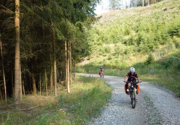 Byla to opravdu velmi příjemná lesní cesta...