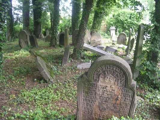 židovský hřbitov - Těšín